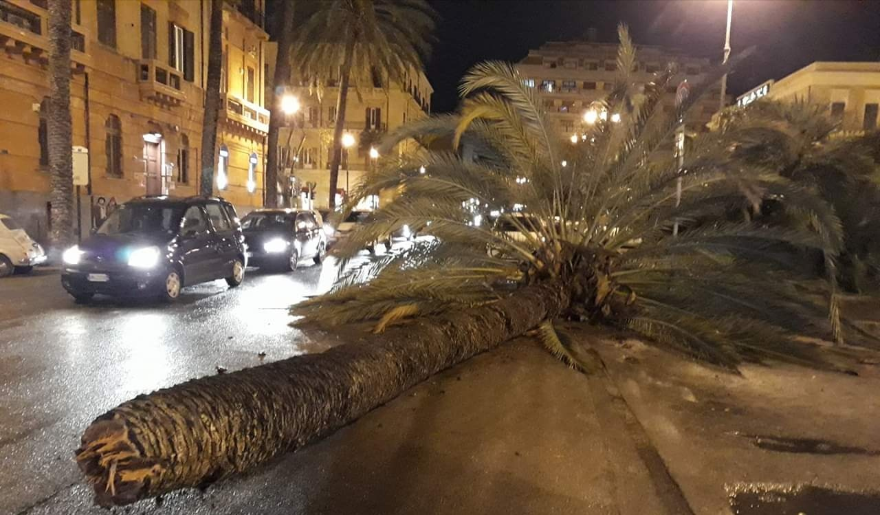 Paura e vento a 100km/h, si contano danni in tutta la provin