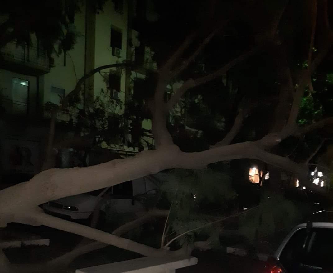 Paura e forte vento a Palermo, si contano danni in tutta la