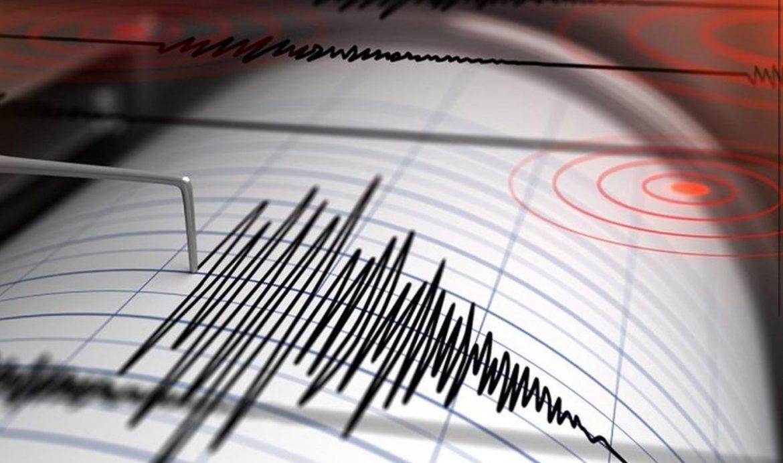 Terremoto a Palermo